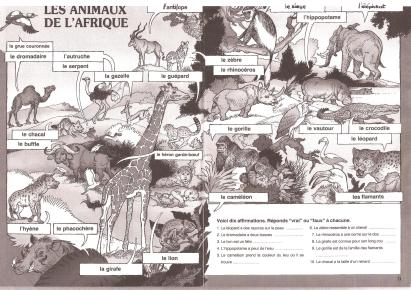 animaux-afrique